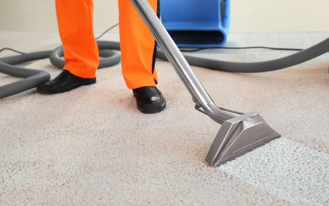 The Benefits of Carpet Cleaning and Extraction